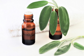 Essential oil Camphor - EO042