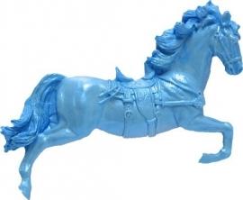 - AANBIEDING- First Impressions - Mal - Western - paard - WS123