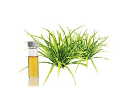 Essential oil Citronella - EO007