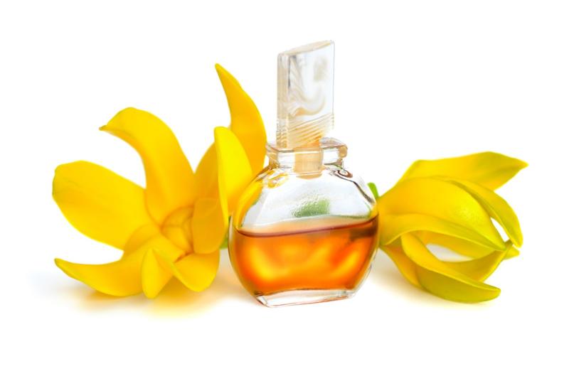 Geurolie voor cosmetica / zeep / melts - Ylang Ylang - GOB505
