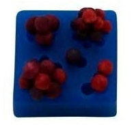 - SALE -  First Impressions - Mold  - Flowers - berries - FL325