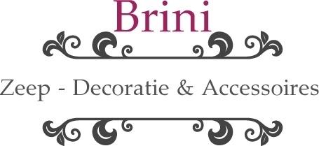 -            Brini - Ondernemer van de maand