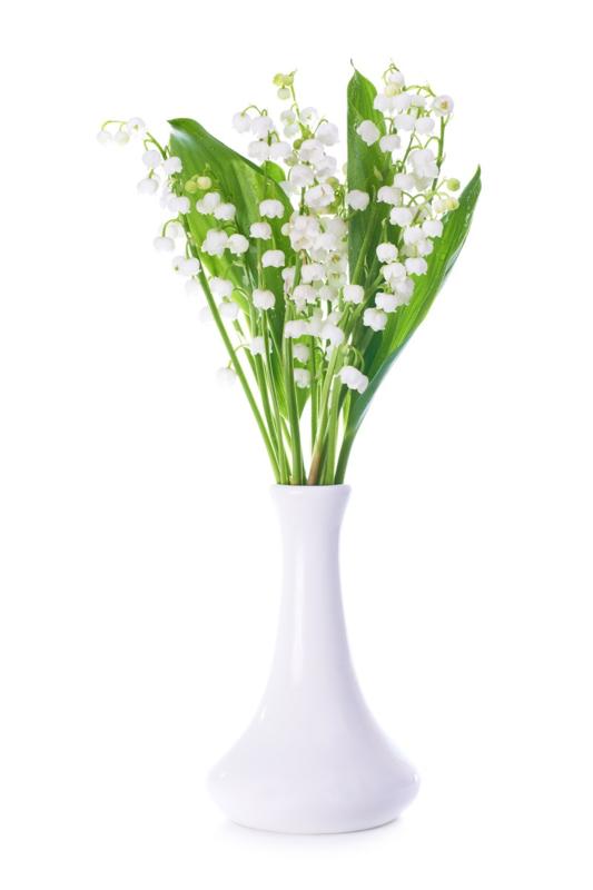 Parfum voor kaarsen - Lelie van Dalen - PKS407