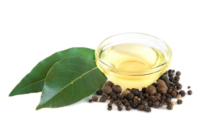 - AANBIEDING - Etherische olie Laurier - EO037 - KH0714 - 10 ml