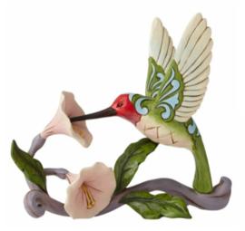 Hummingbird H13,5cm Jim Shore 6008417