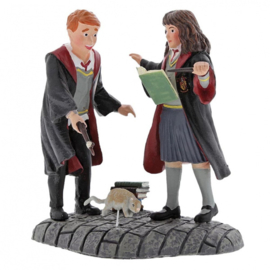 Harry Potter -  Leviosa! Ron & Hermiome