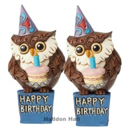 Mini Birthday Owl H12cm - Set van 2 Jim Shore 6003983