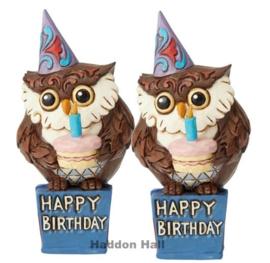 Mini Birthday Owl H12cm - Set van 2 Jim Shore 6003983
