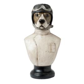 Hond Bust H51cm Vliegenier