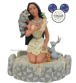 Pocahontas Brave Beauty H18,5cm Jim Shore 6007062