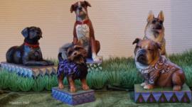 Set van 5 Honden Jim Shore