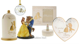 Belle Wedding Set van 6 - Enchanting Disney