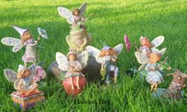 Set van 7 Fairies H 17cm  Jim Shore  o.a. nr. 4014980