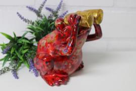 Spaarpot kikker met verrekijker rood *.