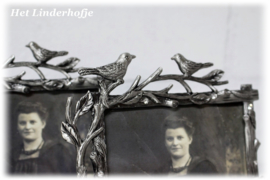 Fotolijst vogeltjes verzilverd 10x15 cm.