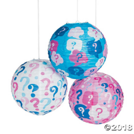 """Lampion Gender Reveal, set van 6 stuks"""
