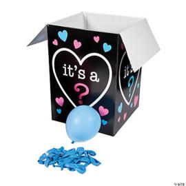 Gender Reveal Surprise Box