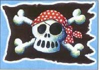 Piraten vlag raamplakker