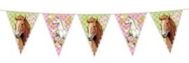 Paarden / kinderfeest vlaggenlijn / 6m