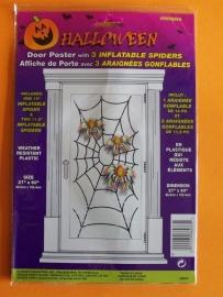 Deurposter / spinnenweb met opblaas spin