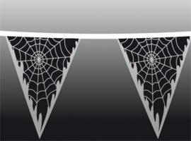 Vlaggenlijn / Spinnenweb / 10m