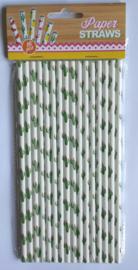 Rietjes / papier / Cactus / 16stks