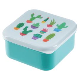 Lunchboxen set Cactus