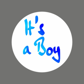 "Stickers / ""It's a Boy / foil / 20 stk"