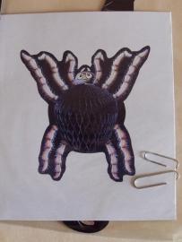 Honeycomb / Spin uitvouw