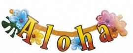 "Hawai bloem ""Aloha"" / banner"