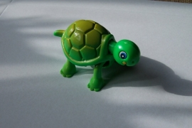Opwind schildpad