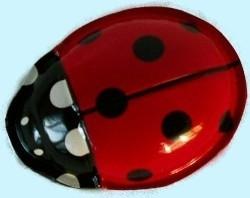 Klik klak lieveheersbeest van blik