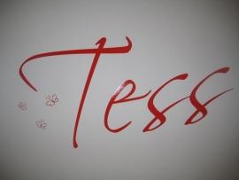 Foto`s van Tess d`r kamer