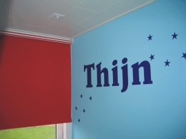 Naamsticker Thijn
