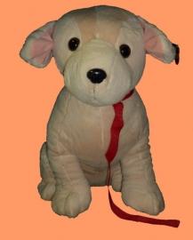 Labrador ± 50cm.