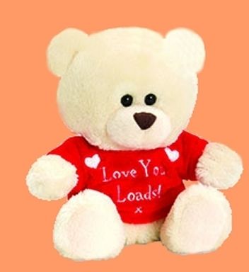 Mini-LOVE-Bear met Love You Loads shirt
