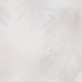 BN Dimensions behang 219549