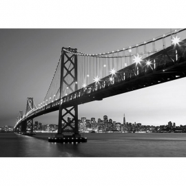 Idealdecor San Francisco Skyline 134