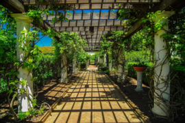 Papermoon Fotobehang Garden Walkway 97033