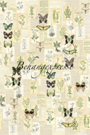 Behangexpresse COLORchoc Wallprint Botanical INK 6076