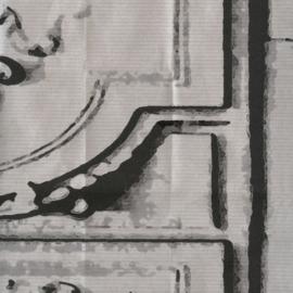 Élitis Pleats behang La Belle et la Bête TP 18401