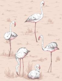 Cole & Son Icons behang Flamingos 112/11039