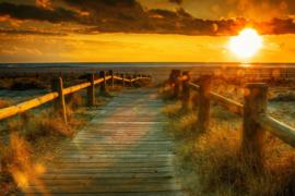 Papermoon Fotobehang Sunset Beach 97030