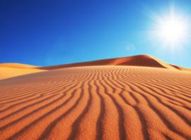 Papermoon Fotobehang Vlies Woestijn 18318