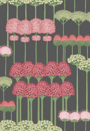 Cole & Son Botanical behang Allium 115/12037