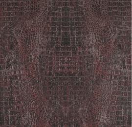 BN Curious behang 17953