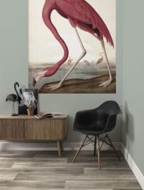 KEK Amsterdam Flora & Fauna behangpaneel Flamingo PA-012