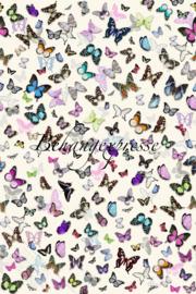 Behangexpresse COLORchoc Wallprint Butterflies INK 6072