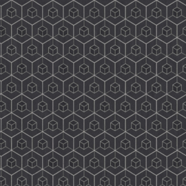 BN Dimensions behang 219561
