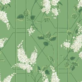 Cole & Son Botanical behang Wisteria 115/5016